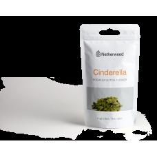 CINDERELLA NETHERWEED